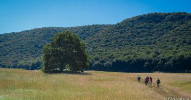Anello monte Artemisio e forra del Maschio d'Ariano